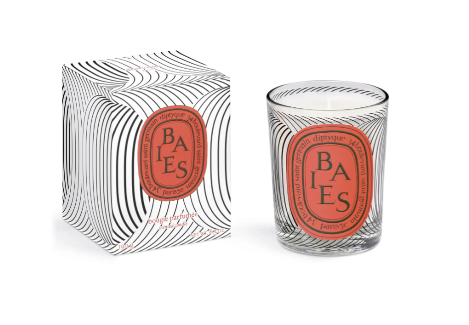 Diptyque Candles | With Love, Vienna Lyn