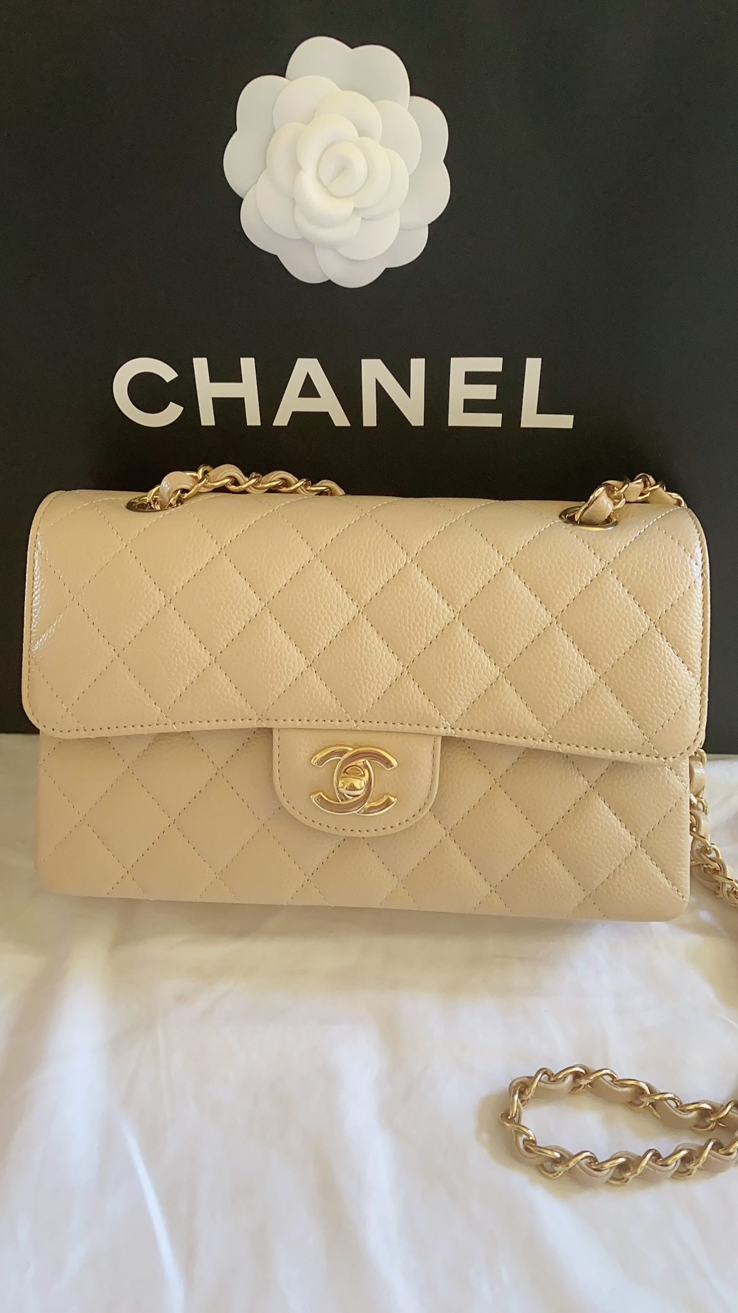 Chanel Classic Bag in Beige Clair | With Love, Vienna Lyn